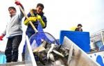 화천으로 모이는 전국 산천어 '대이동' 시작