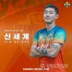 강원FC, FA 수비수 신세계 영입