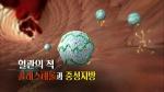 [TV 하이라이트] 혈관의 적 중성지방 예방법