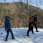 인제 대암산·향로봉 일대서 '반달가슴곰 발자국' 발견