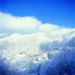 걷다 지친 겨울이 앉아 쉬고 있는 길 푸르름을 잠시 내려놓은 세상