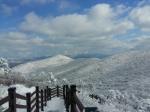 겨울왕국으로 변신한 태백산