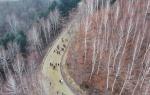 인제 자작나무숲서 겨울 산악 트레일런 대회 열려