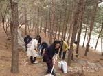 영월군여성단체협의회 능말도시숲 등산로 정비