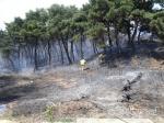 원주 소초면서 산불 발생… 헬기 2대 투입해 진화중