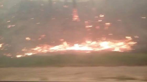 동해안 대형산불로 일부구간 전면 통제