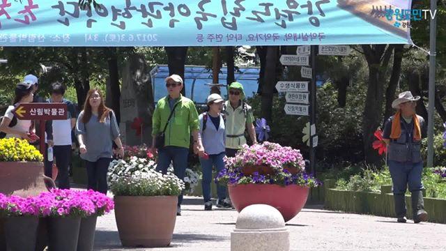 맑고 화창한 주말, 춘천으로 힐링 나들이 떠나요