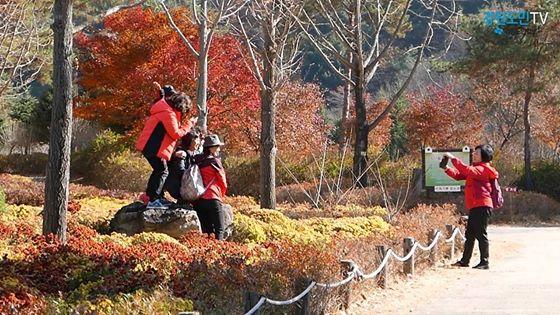 가을의 끝자락에 선 홍천 '수타사'