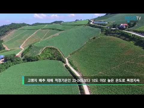 하늘에서 본 강릉 '안반데기'