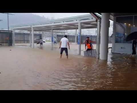 100㎜ 폭우로 KTX 강릉역 침수