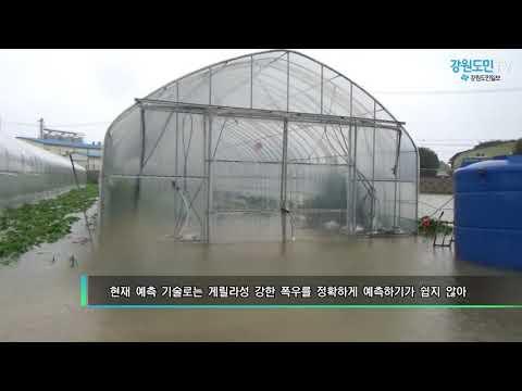 게릴라성 집중호우로 강원북부지역 물난리