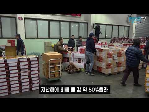 설 대목 앞둔 농산물도매시장 분주