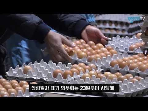 """달걀 산란일자 표기 의무화 """"농장 경영난"""" vs """"신선도 확인"""" 논란"""