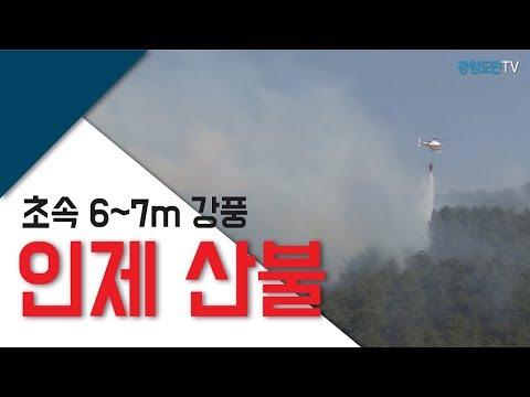 인제 산불 초속 6~7m 강풍에 진화 어려움 '주민 대피령'