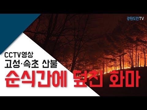 [CCTV 영상] 고성·속초 산불, 순식간에 덮친 화마