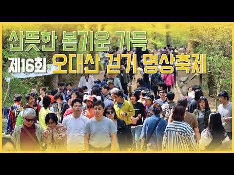 산뜻한 봄기운 가득 '제16회 오대산 걷기 명상축제'