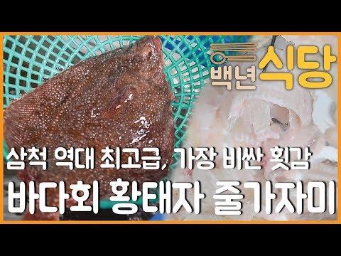 [백년식당] 바다회 황태자 삼척 줄가자미
