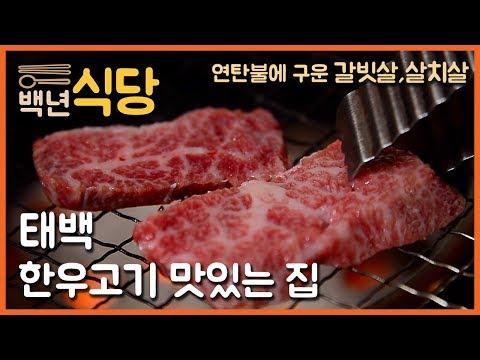 [백년식당] 태백 한우고기 맛있는 집 (연탄구이 갈빗살 살치살)