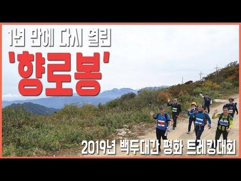진부령에서 향로봉까지 '2019년 백구대간 평화 트레킹대회'
