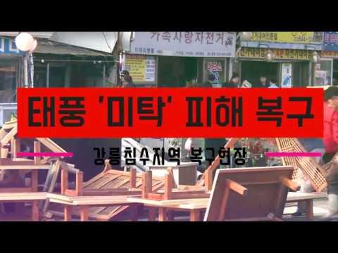 미탁이 할퀴고 간 강릉·삼척 복구 '구슬땀'
