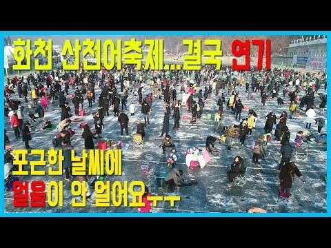 '화천산천어축제 개막 연기' 얼음 상태 어떻길래?