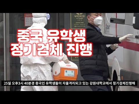 강원대학교 중국 유학생 정기검체 진행