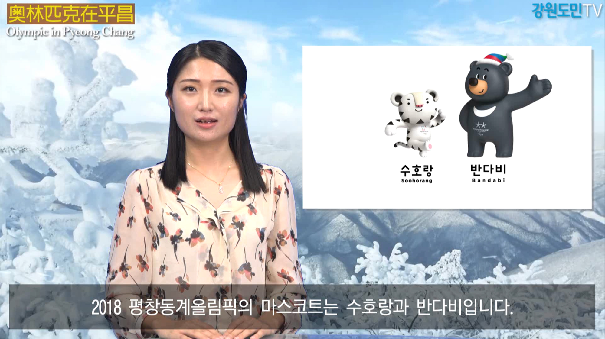 Olympic in Pyeong chang (평창동계올림픽 마스코트)