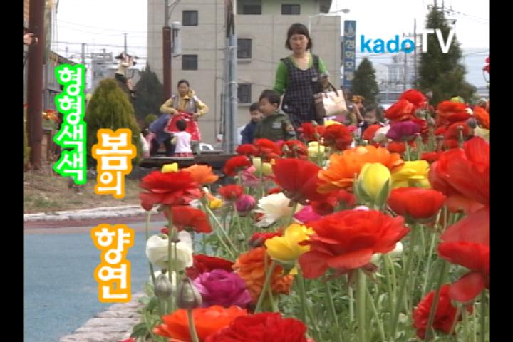 형형색색 봄의 향연
