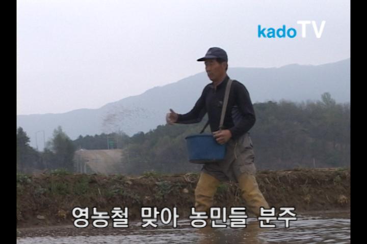 영농철 맞아 농민들 분주