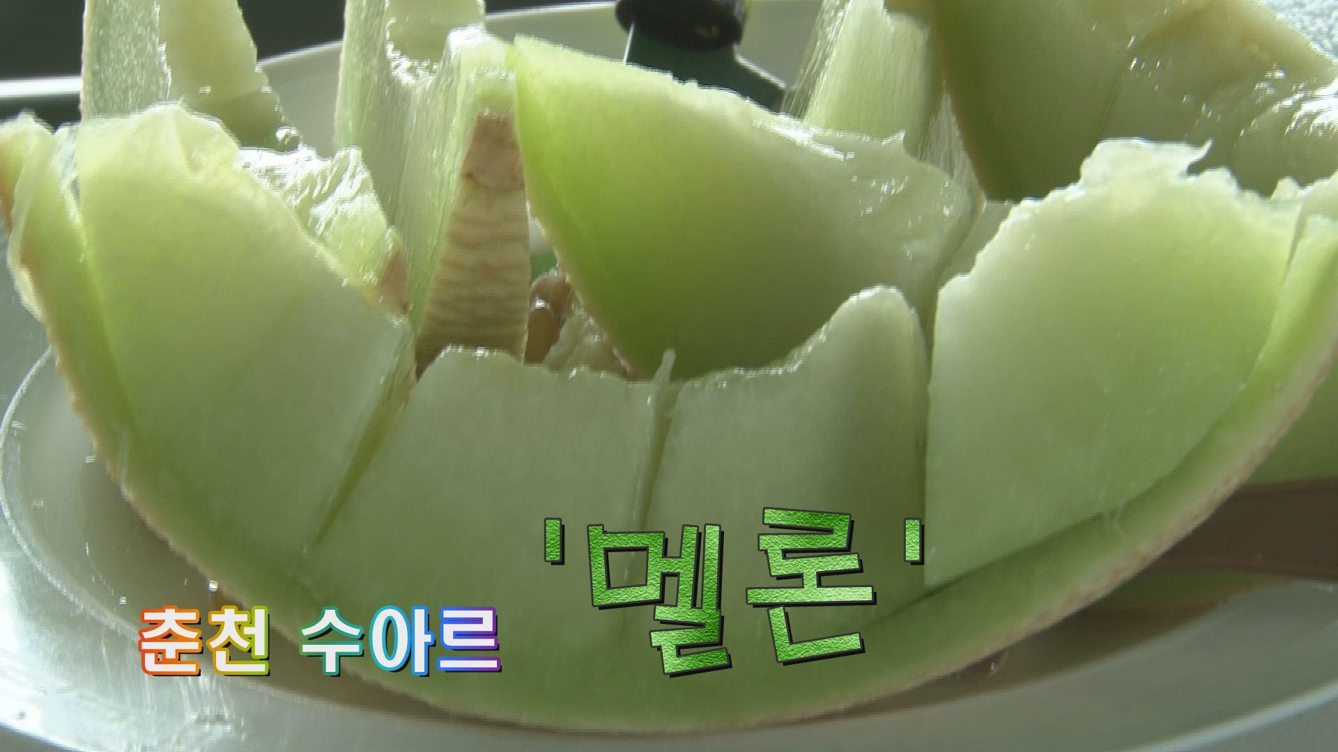 춘천 수아르 멜론